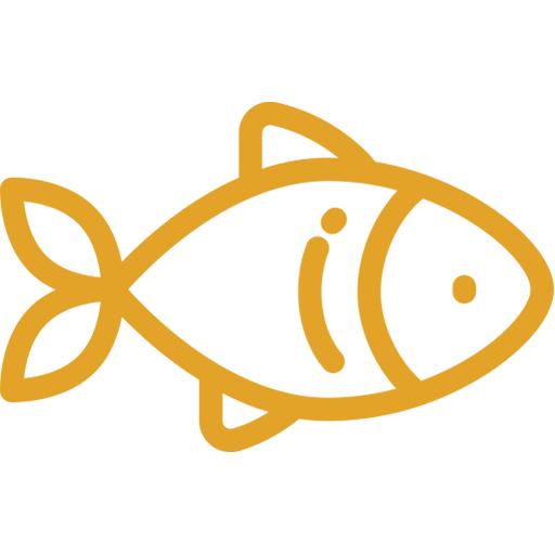 Escalope de Saumon à la Plancha
